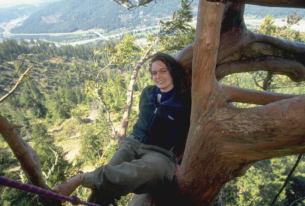 Julia Hill sitting in a tree in California