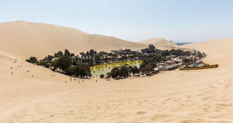 Desert oasis surrounded by trees amidst sand dunes