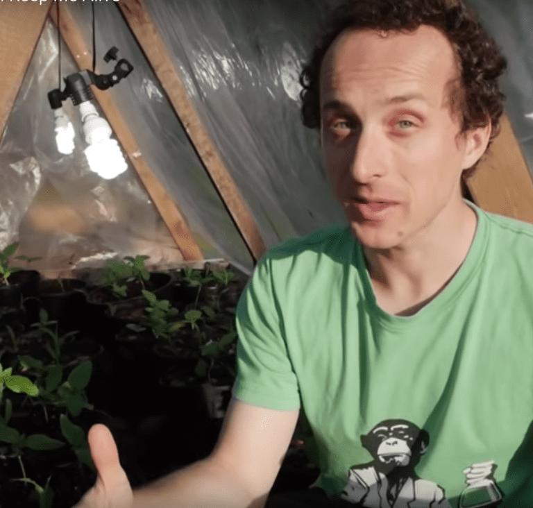 Scientist Kurtis Baute inside his greenhouse