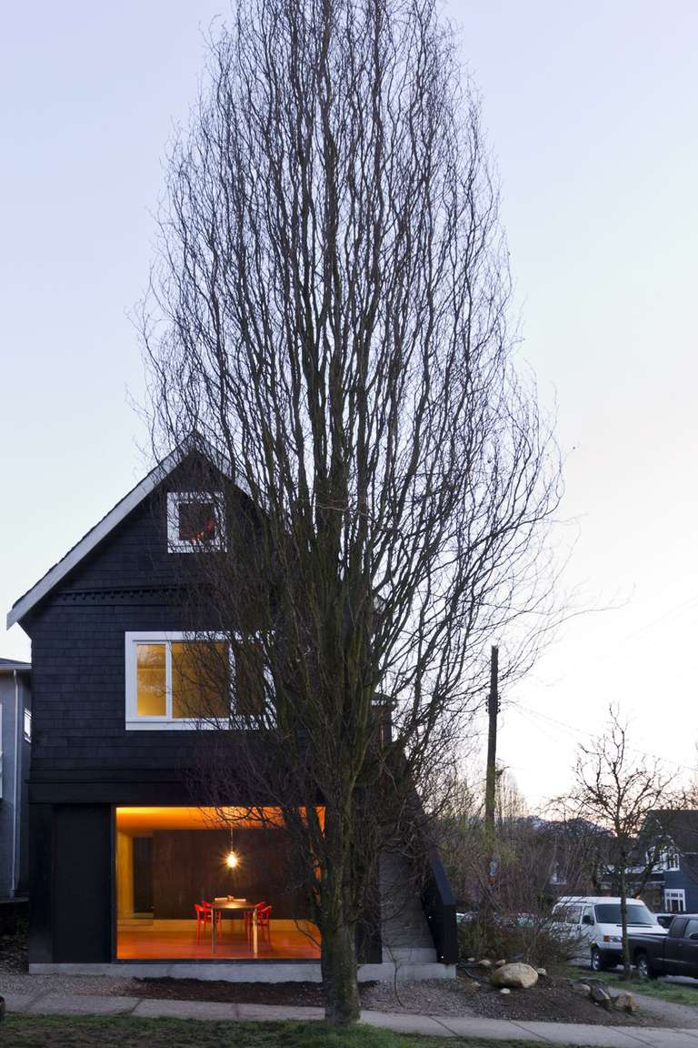 House and tall tree on a city street