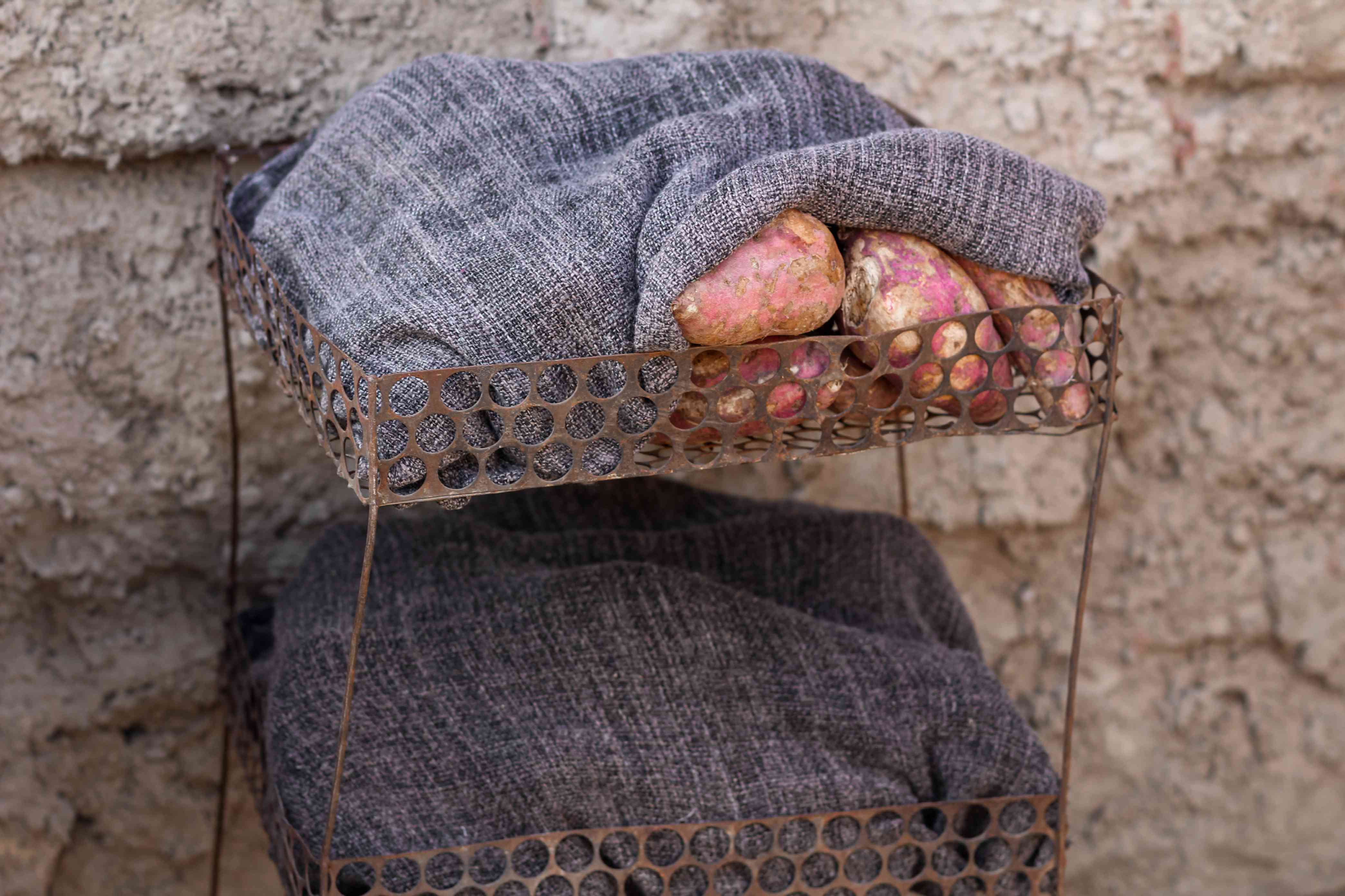 sweet potatoes being stored and cured under heavy fabric outside near stone wall