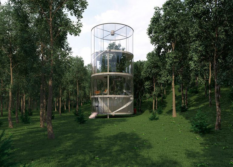 La casa de vacaciones de vidrio tubular encierra un árbol maduro