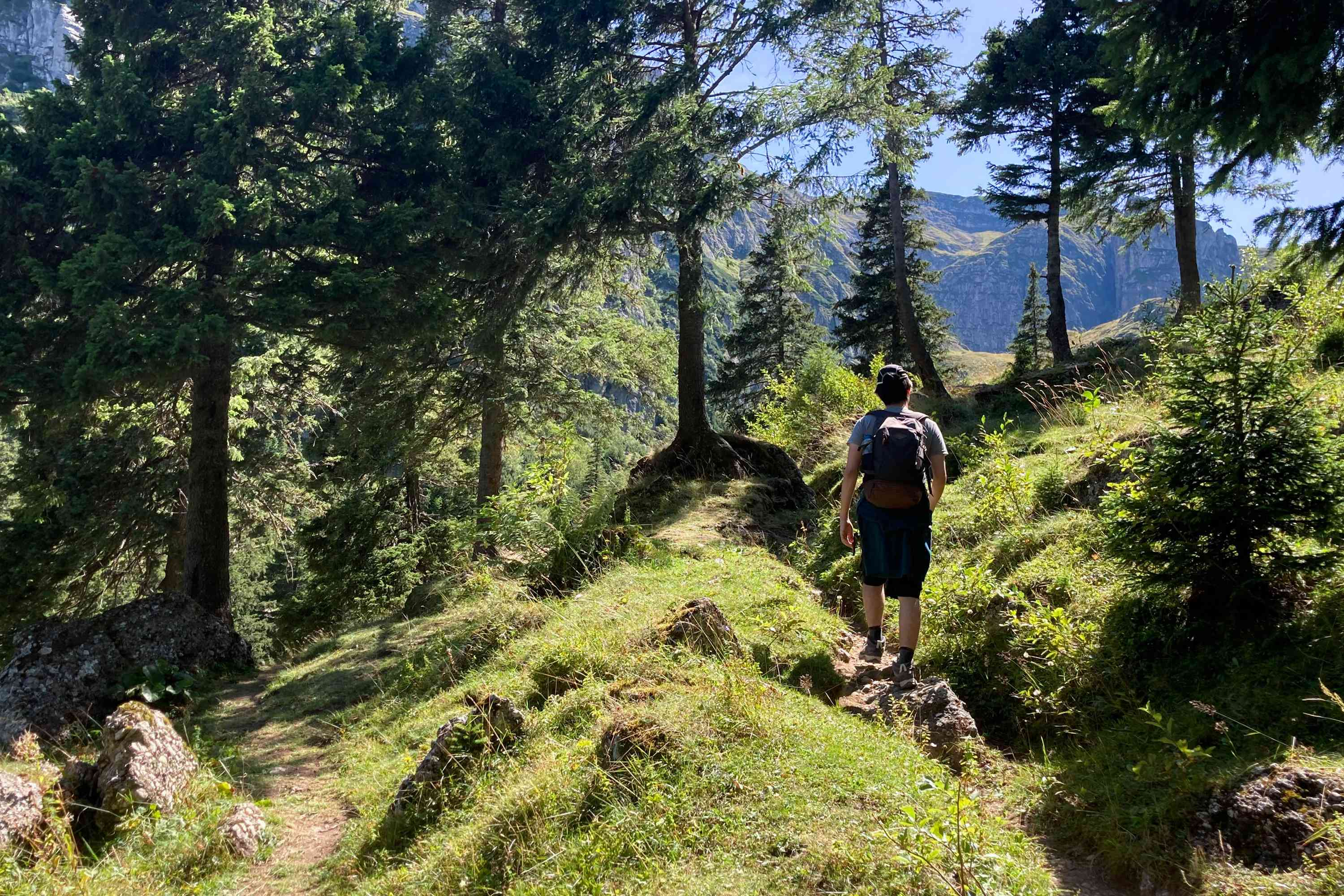 person hikes on rocky ledge in middle of mountainous forest