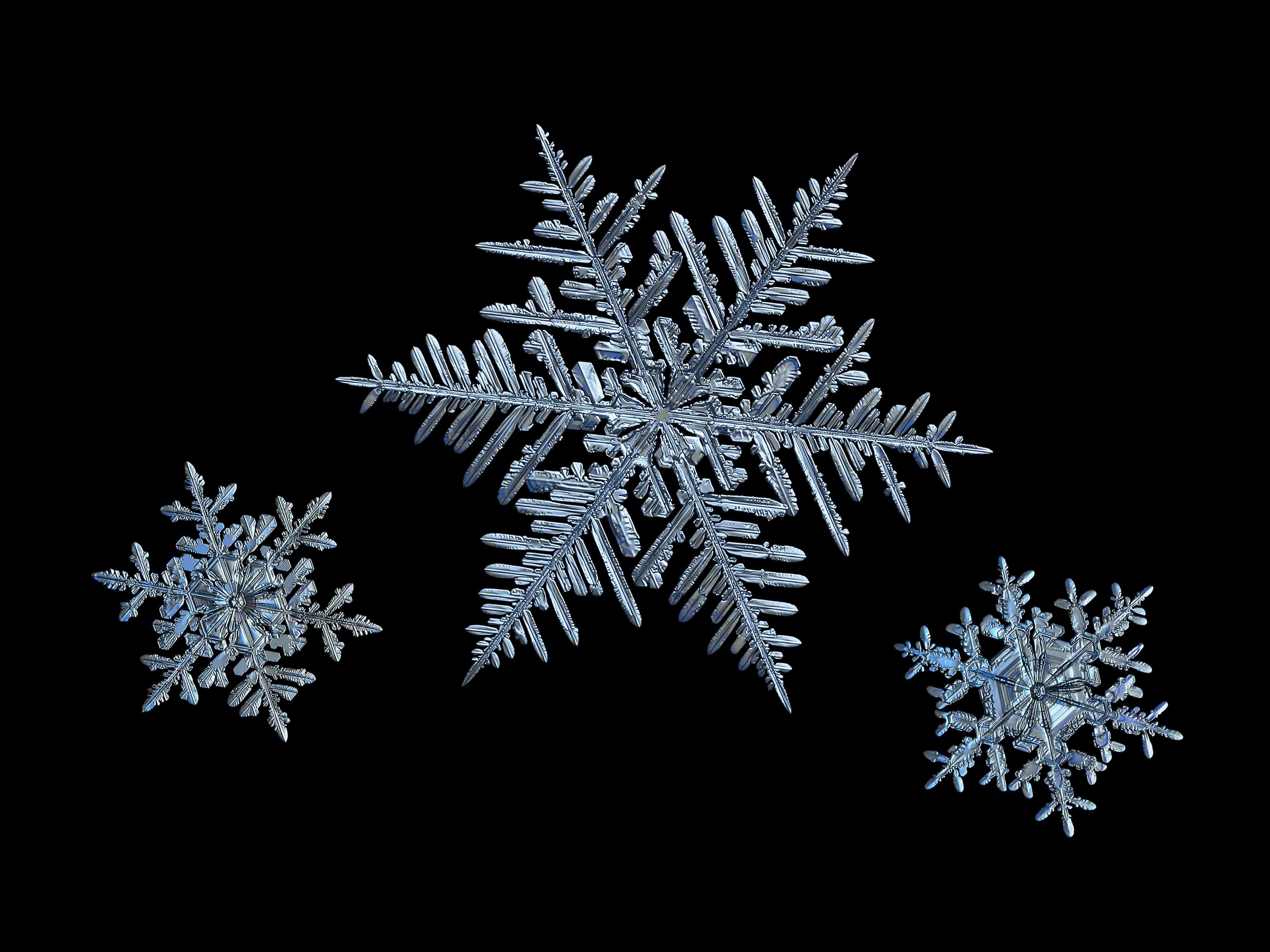 three macro snowflakes