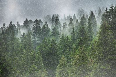 Heavy rain in the mountains