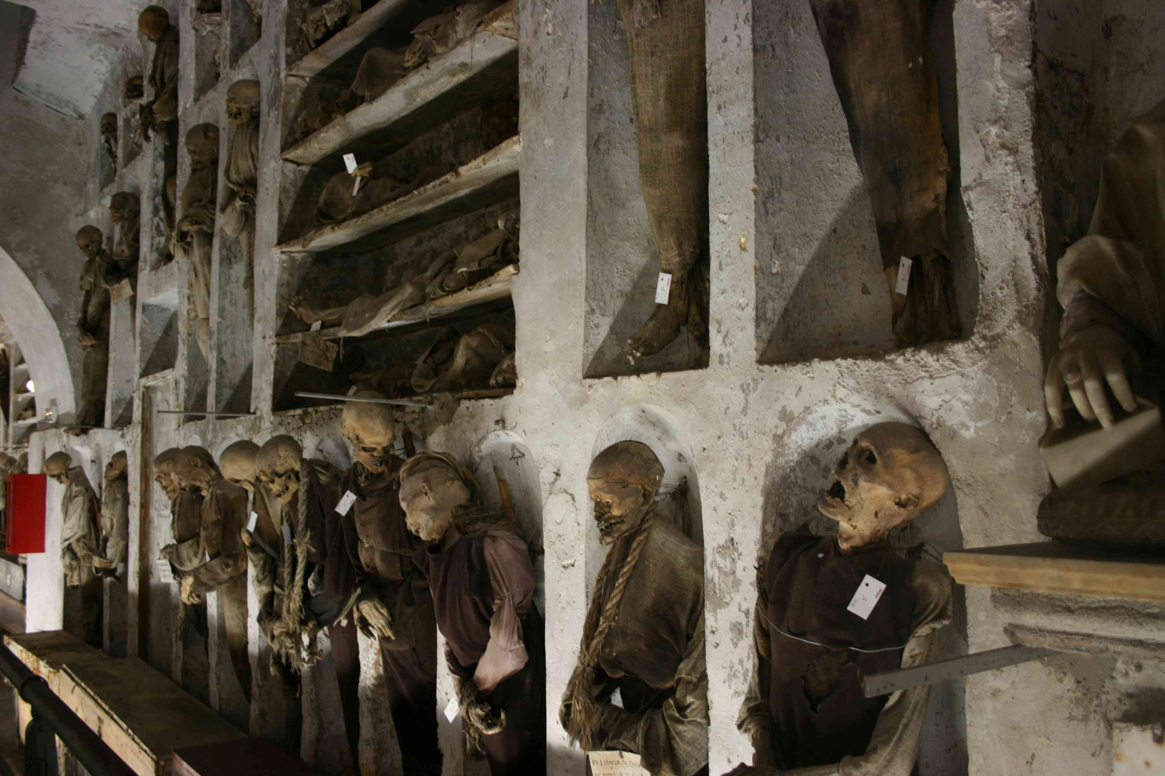 Mummies displayed along a wall in the Capuchin Catacombs in Palermo Italy