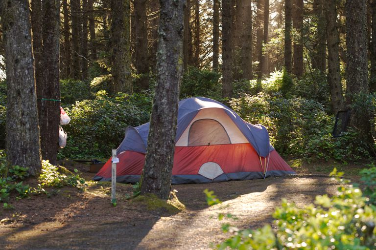 large red and blue tent is set up in tree-filled woods with sunlight filtering in
