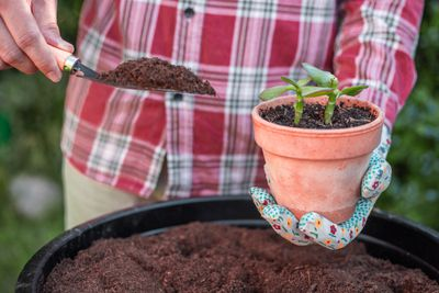 guy in plaid shirt holds trowel of compost in one hand and potted pot in other