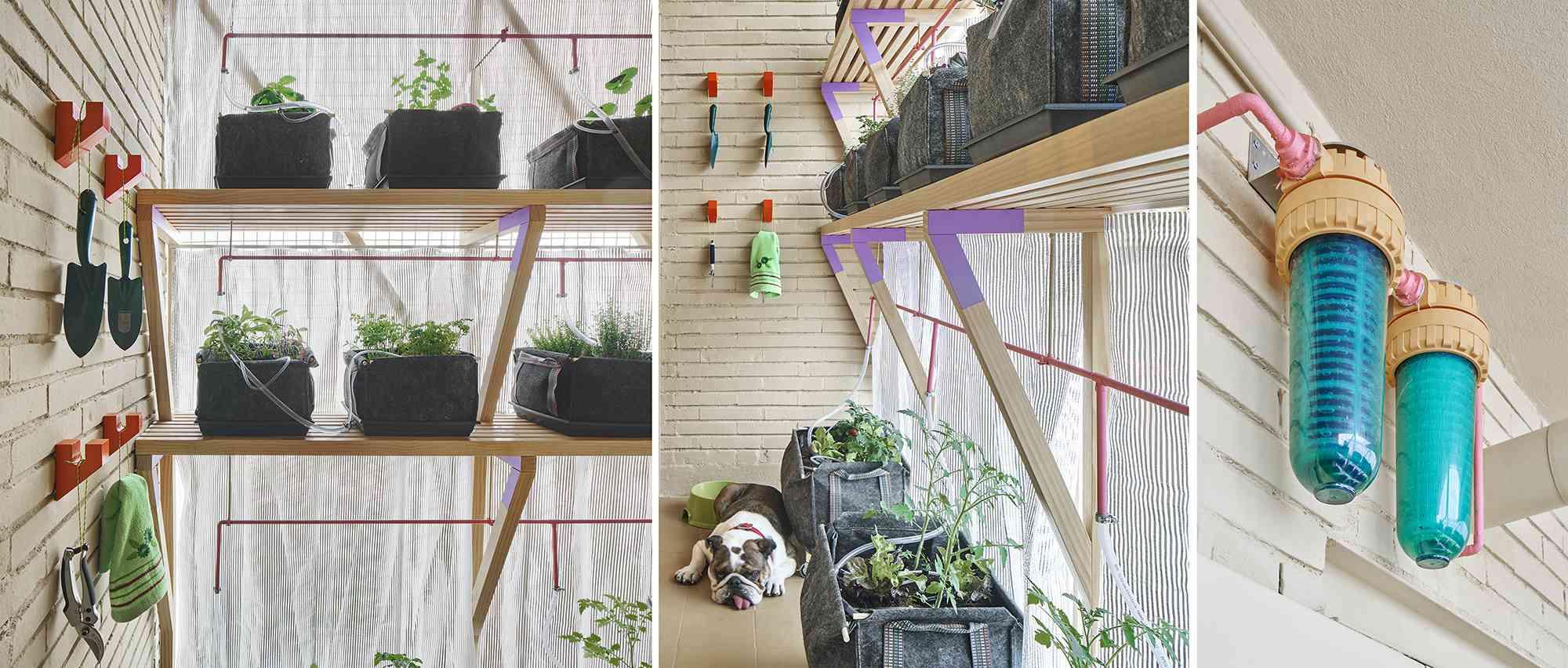 small apartment renovation madrid Husos Architects vertical garden