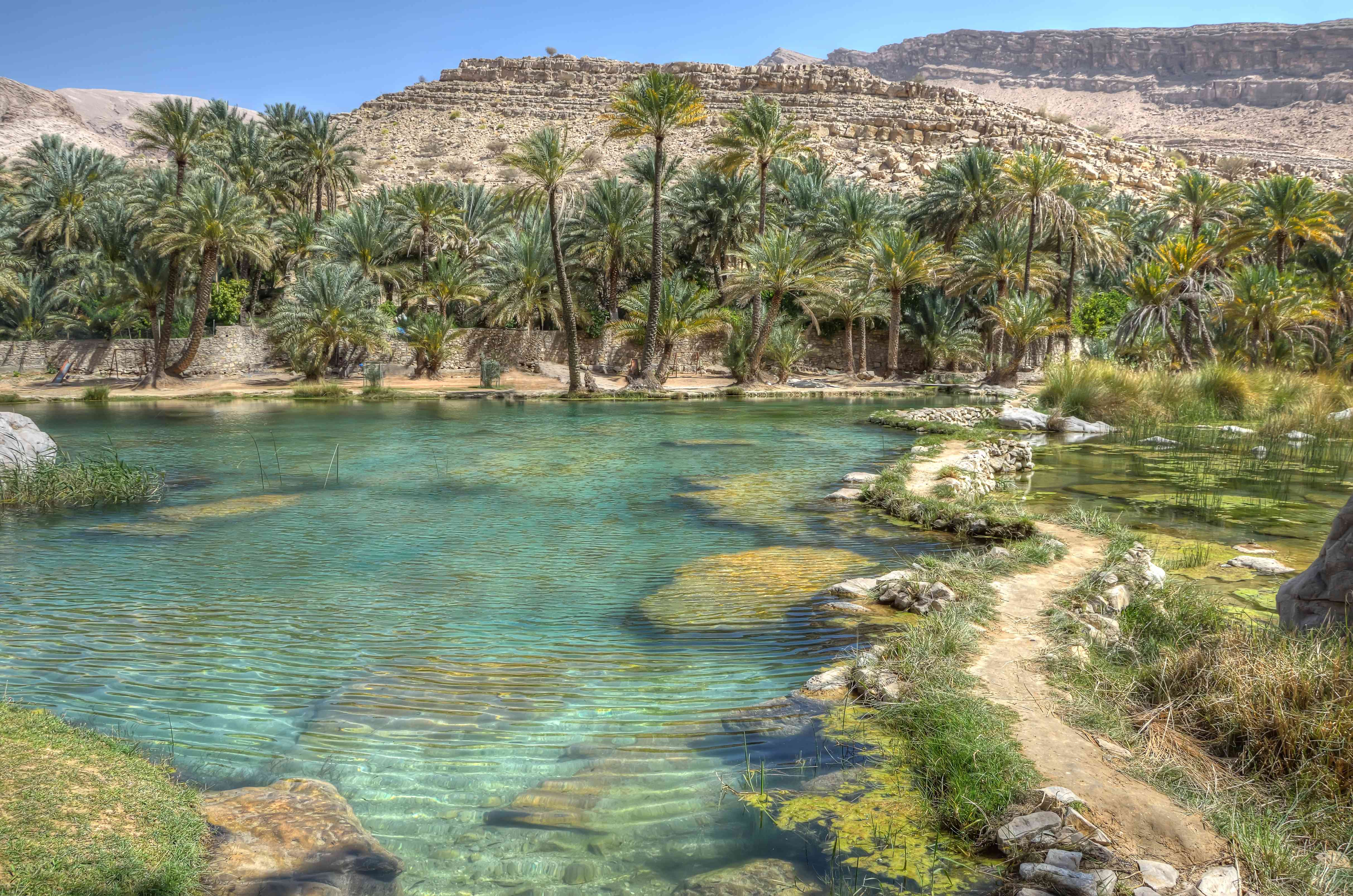 clear blue waters of Wadi Bani Khalid in the valley of Oman, surrounded by palm trees with desert beyond