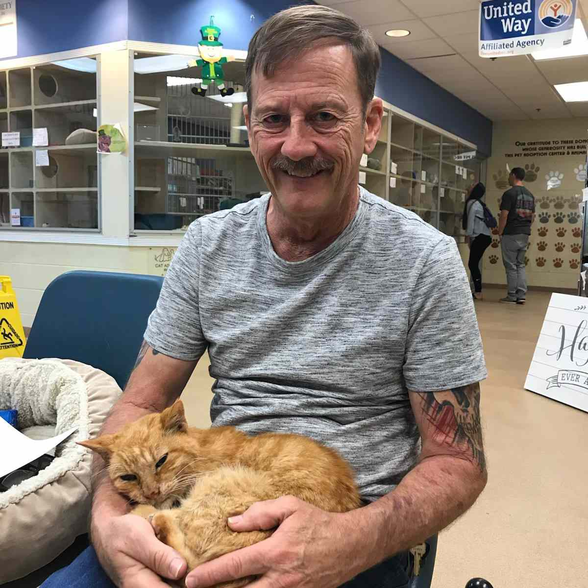 Cat is reunited with his owner after 14 years.