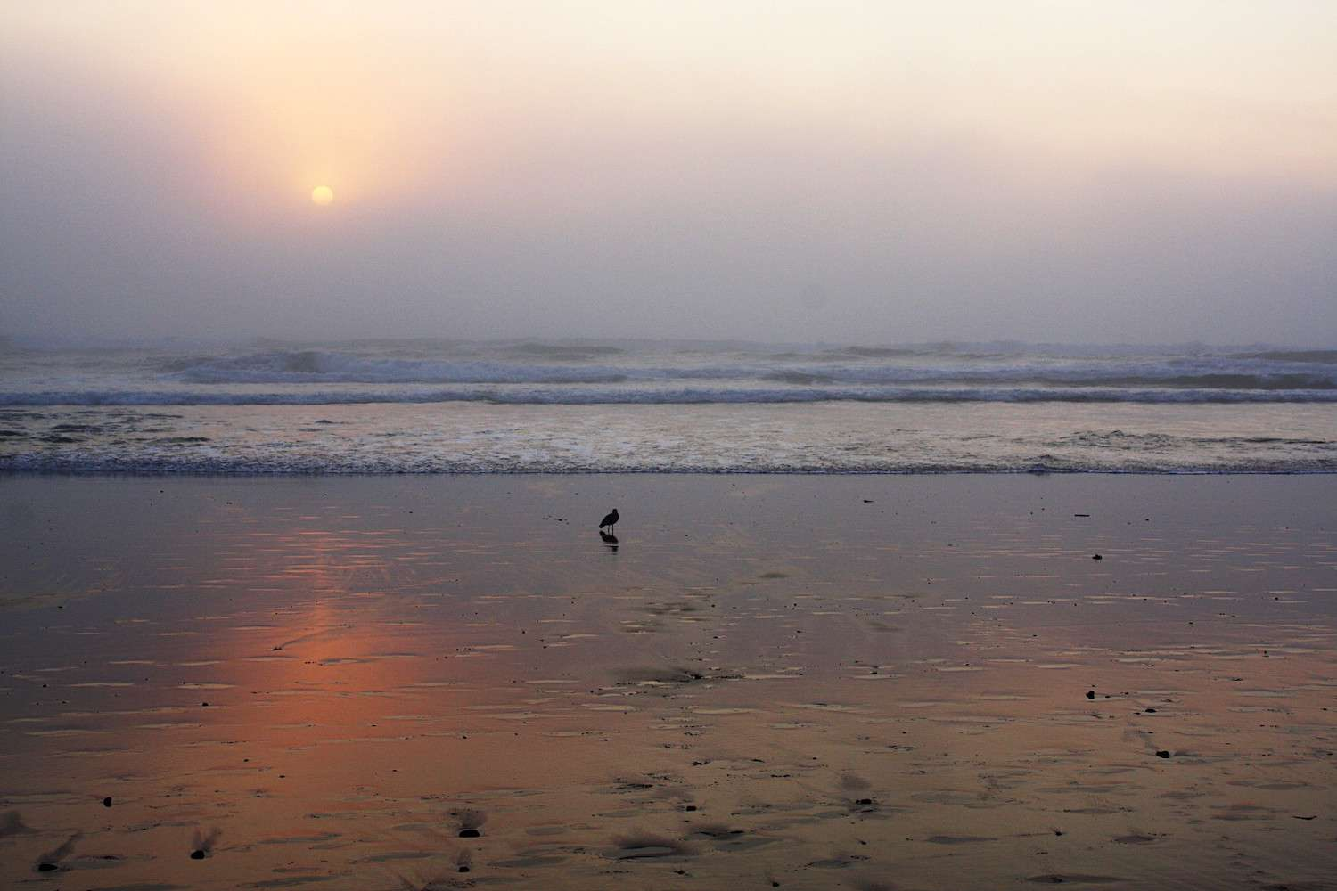 The setting sun reflects onto the thin layer of water covering the sand on a beach in Lincoln City, Oregon