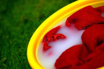 yellow bucket on green grass filled with a red towel in soapy water