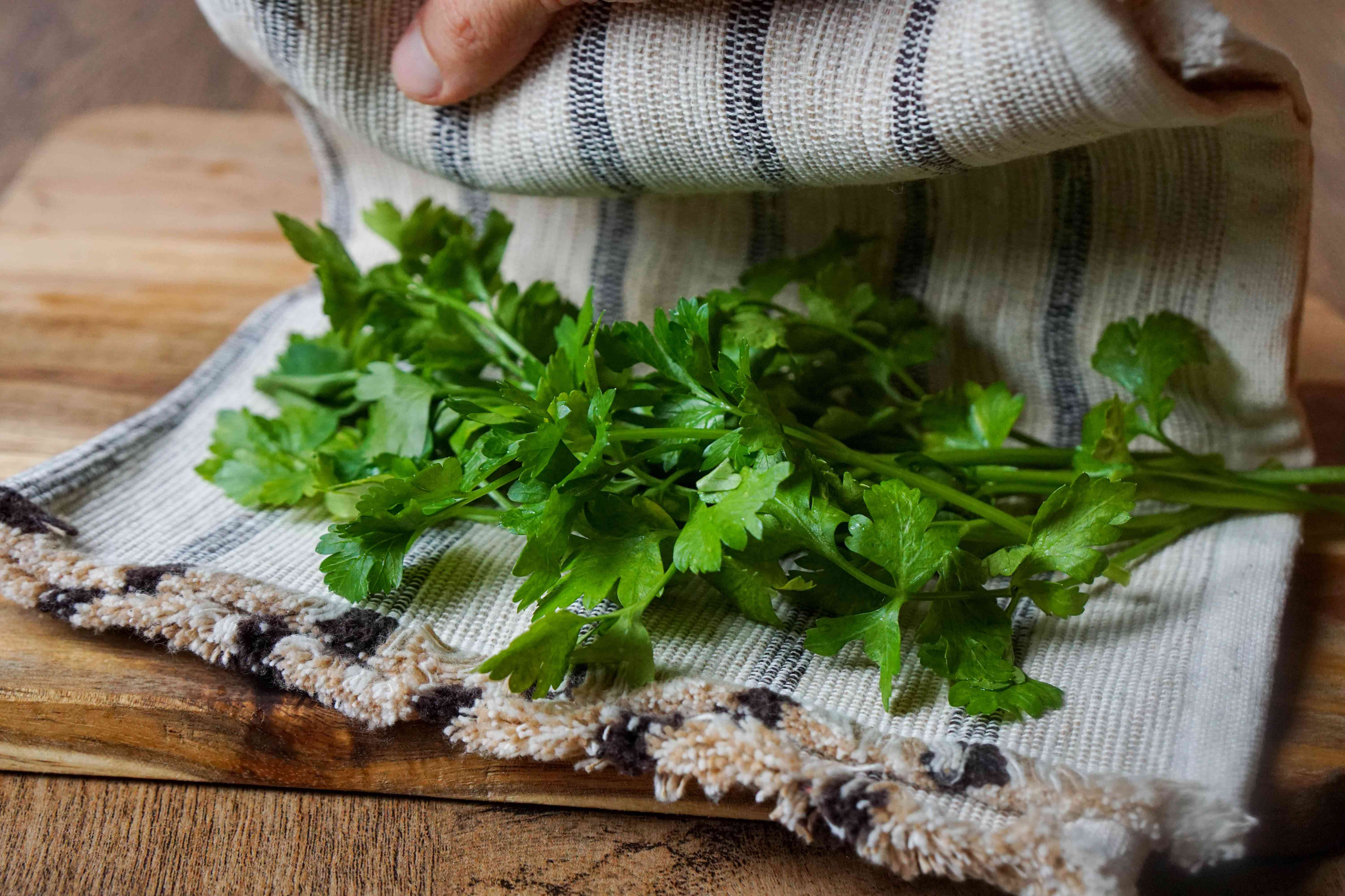 fresh parsley is wrapped with damp tea cloth to preserve and store