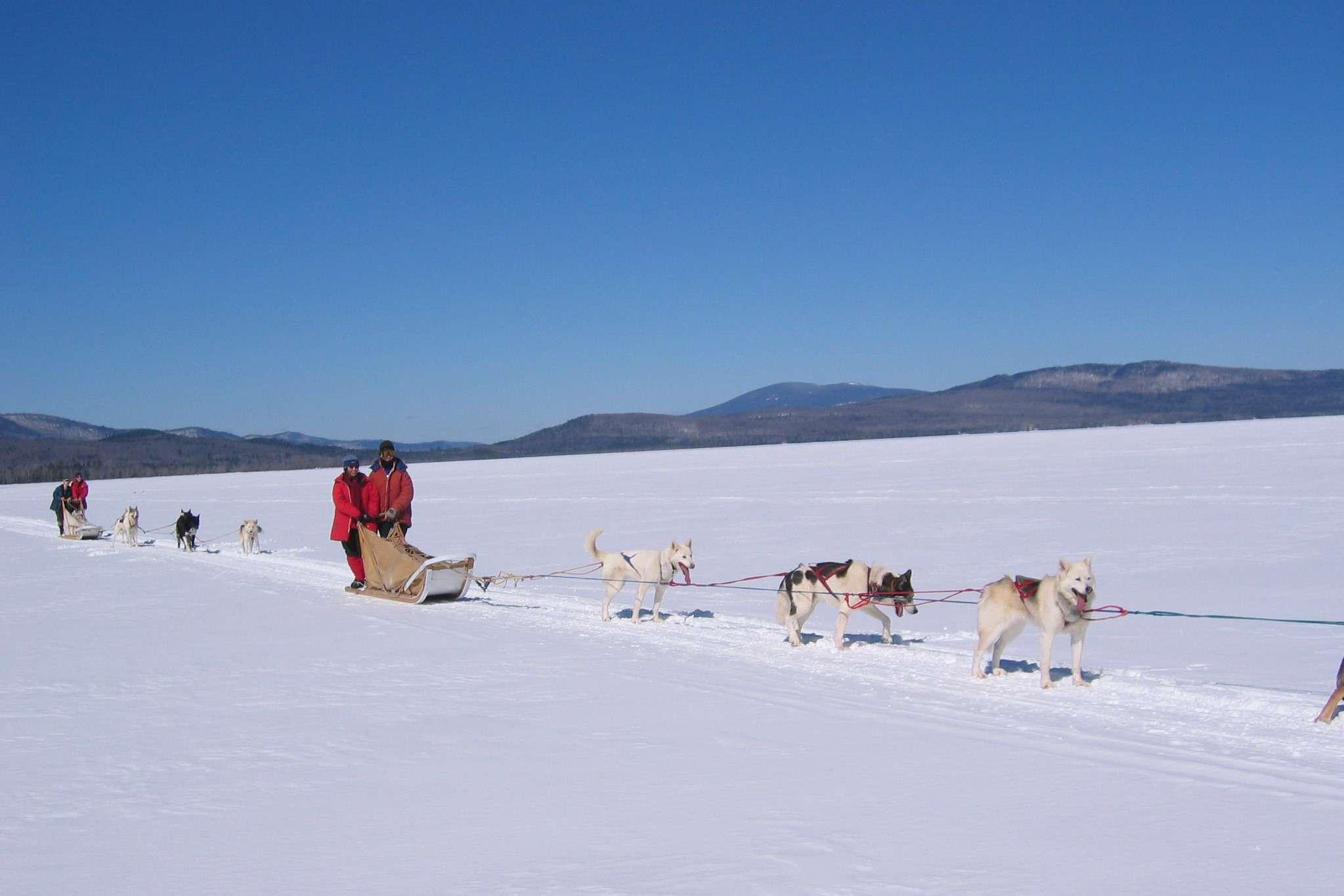 People mushing on a frozen lake