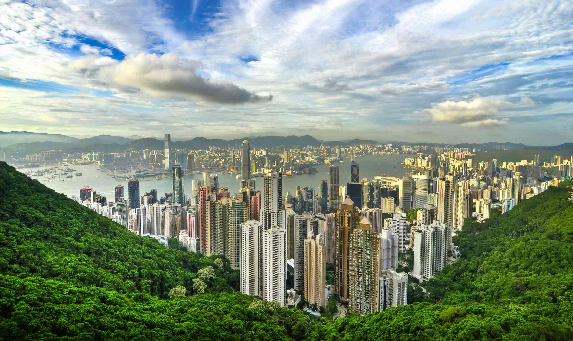 View from the lush green mountain, Victoria Peak, looking down at the highrises of city of Hong Kong with a bright blue sky filled with white clouds above