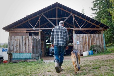 man in work boots and German Shepherd dog walk into barn together