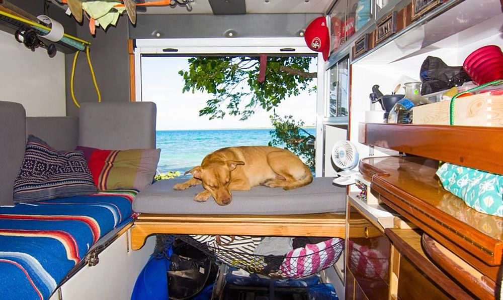 Dog sleeping on back bench in the RV