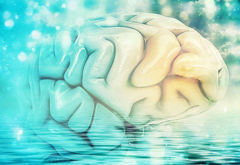 Una futura interfaz cerebro / nube podría darnos a todos una superconciencia colectiva