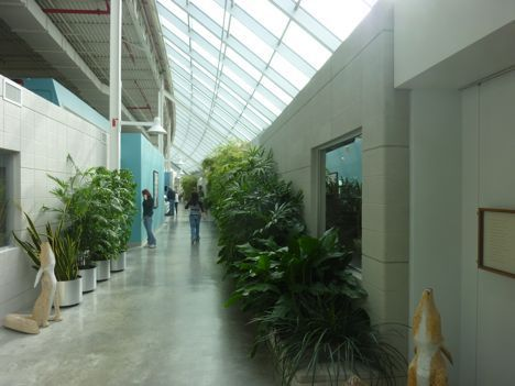 herman miller greenhouse interior photo
