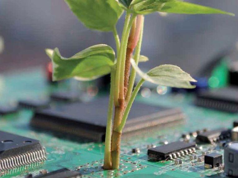 Informe de la ONU: Hasta el 85% de los desechos electrónicos de África provienen de África