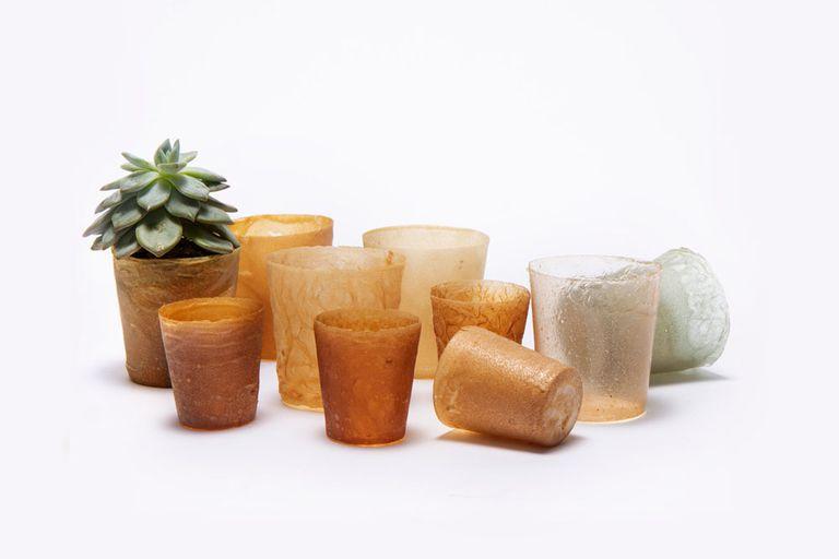 Shellworks crea envases sostenibles con conchas de marisco (vídeo)