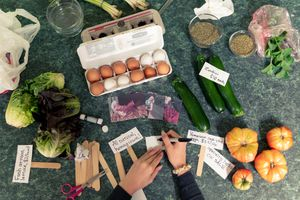 overhead shot of veggies and labels